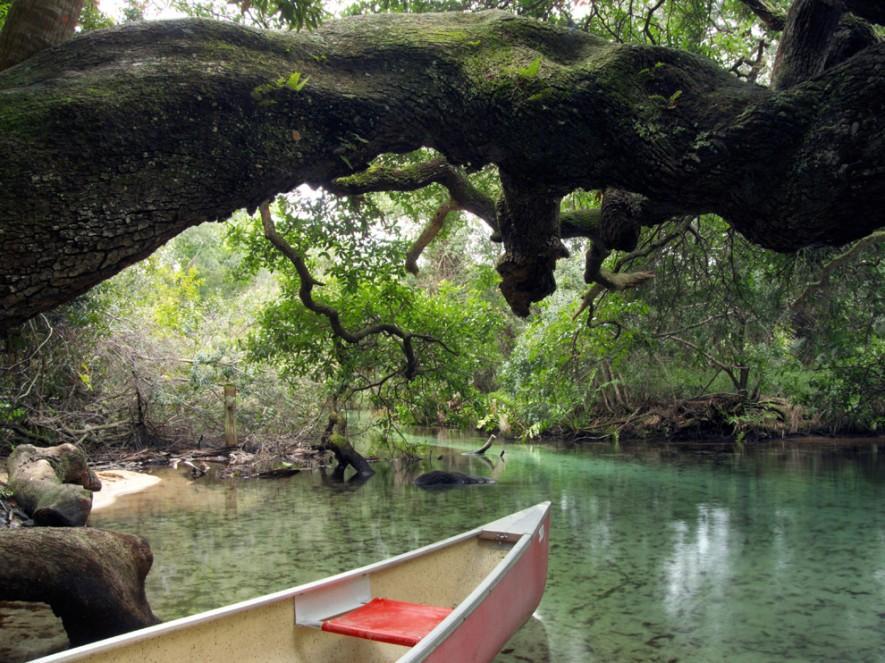 مسیر قایقرانی در فلوریدا