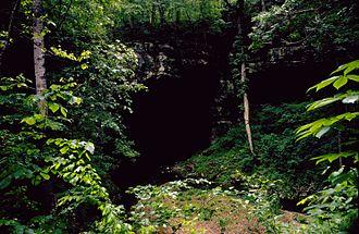 یکی از ورودیهای غار روسل در جکسون کانتی.