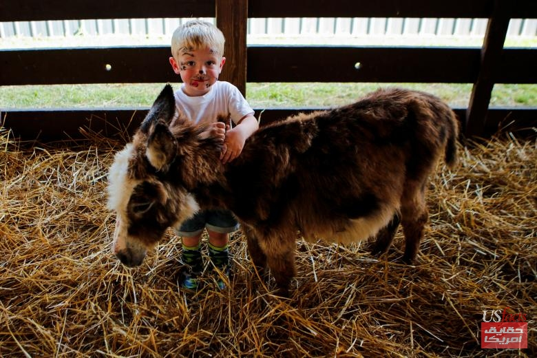 A boy stands next to a donkey as people attend the New Jersey State Fair in Augusta, New Jersey