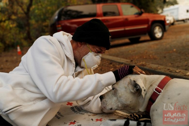 Evacuee Brian Etter and dog Tone, who walked on foot to escape the Camp Fire, rest in the parking lot of Neighborhood Church of Chico, in Chico, California