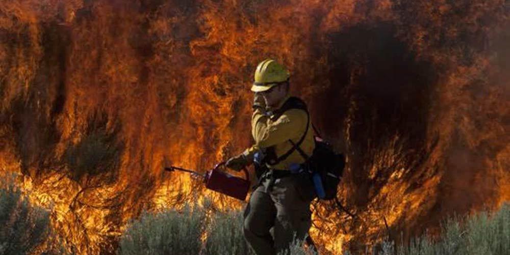 آتش-سوزی-کالیفرنیا